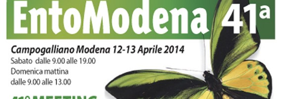 entomodena2014 copia